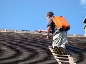 Traitement hydrofuge de toiture Polliat
